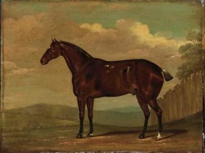 T.C Cooper (Late 19th Century)