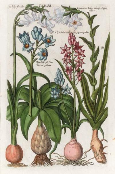 JOHAN THEODORE DE BRY (1562-16