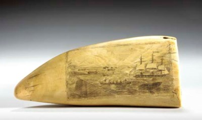 AN ENGRAVED SCRIMSHAW WHALE TO