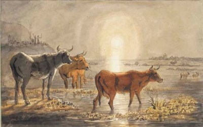 Three cows in a flooded meadow