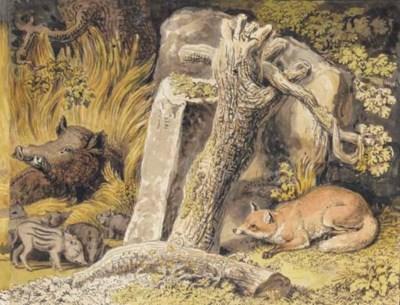 A fox lying in wait behind a r