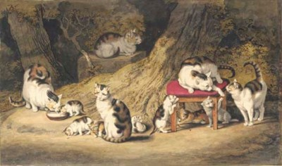 Five cats and seven kittens pl