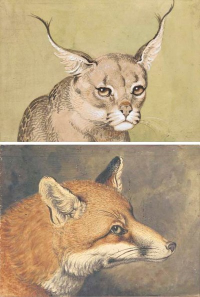 Head of a Lynx; and Head of a