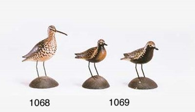 A GOLDEN PLOVER AND A BLACK BE