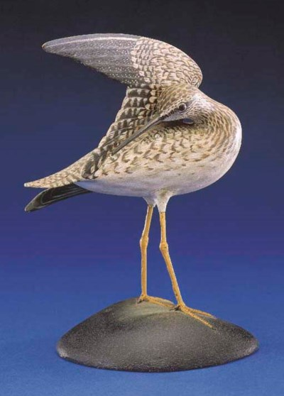 AN EXTREMELY FINE YELLOWLEGS
