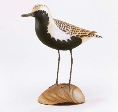A BLACK BELLIED PLOVER