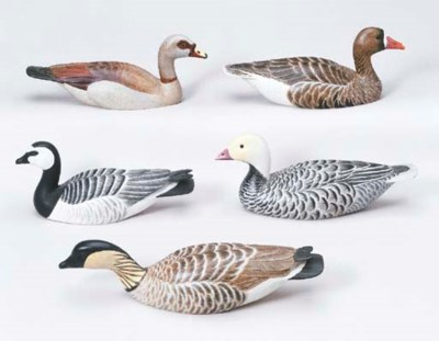 A GROUP FIVE GEESE