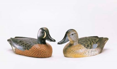 A BLUEWING TEAL HEN AND DRAKE