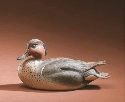 A GREENWING TEAL DRAKE