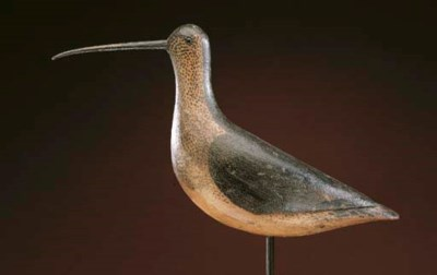A VERY RARE CURLEW