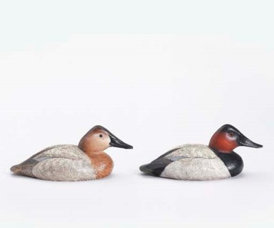 A CANVASBACK HEN AND DRAKE