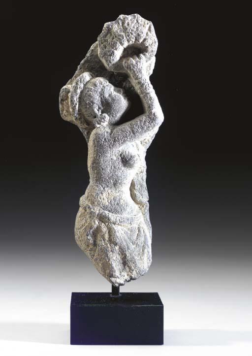 A Gray Schist Fragment