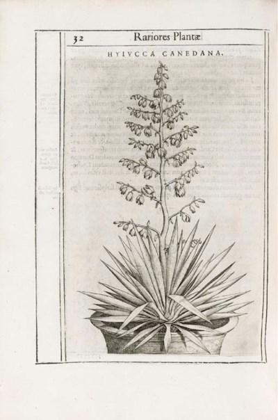 ALDINI, Tobia (17th. century)