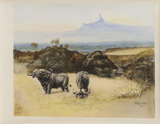 MILLAIS, John Guille. Wild Lif