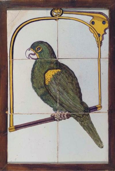 A Rotterdam polychrome parrot