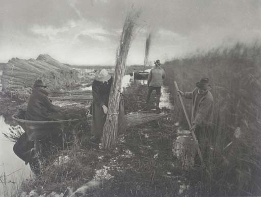 PETER HENRY EMERSON (1856-1936