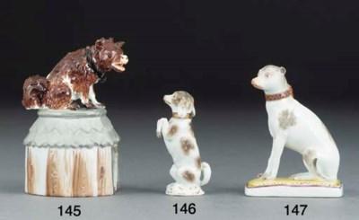 A Meissen model of a terrier o