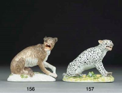 A Meissen model of a wolf