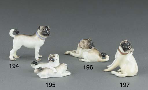 A Meissen model of pug-dog