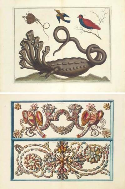 SEBA, Augustus (1665-1736). Lo