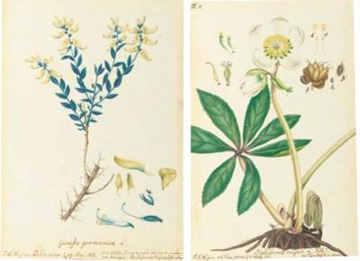 WINTERSCHMIDT, Johann Samuel (