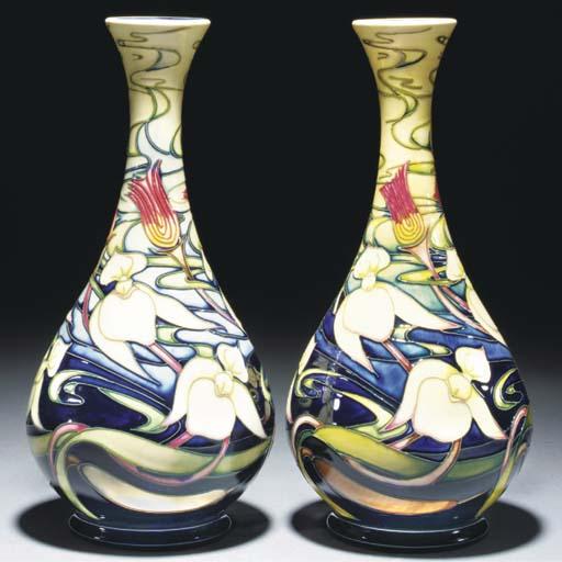 Orchid Arabesque
