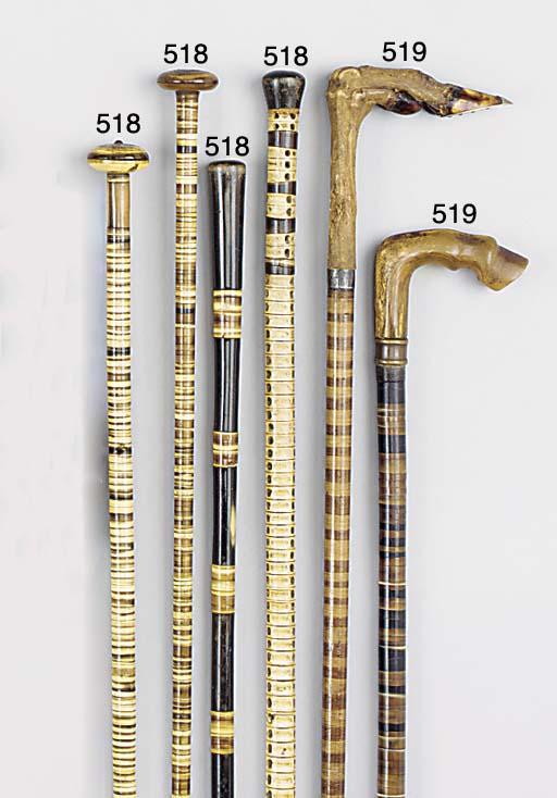 A marine vertebrae and horn kn