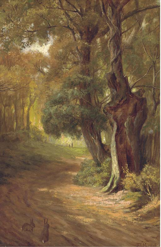 John Fitz Marshall (1859-1932)