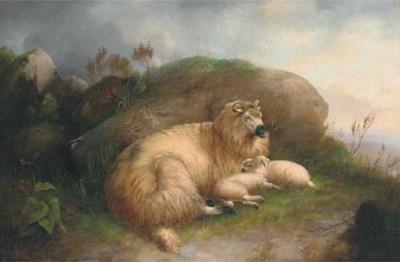 M. Joyner, 19th Century