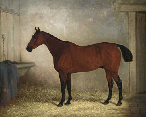Edward Brown, 19th Century