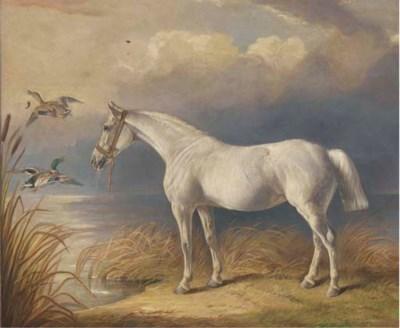 Edward Lloyd (fl.1846-1891)
