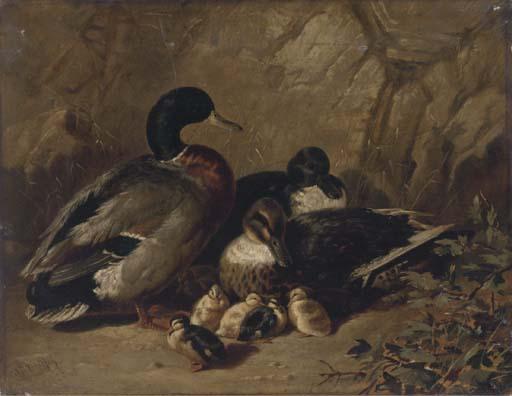 James Bradley, 19th Century