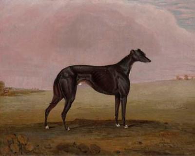 R. W. Folkard (fl.1831-1844)