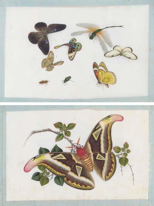 A ricepaper album, 19th century
