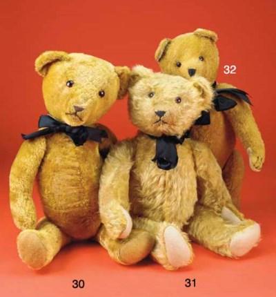 A golden short mohair teddy be