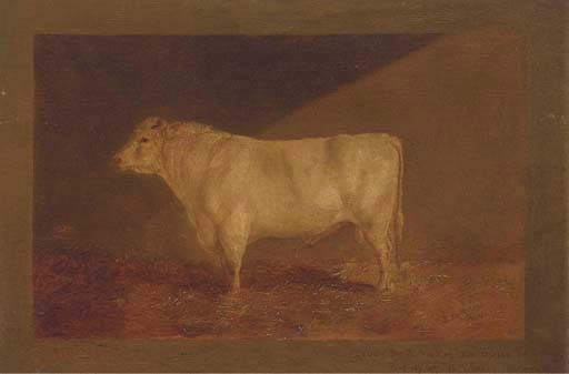 J. Sturgess, 19th Century