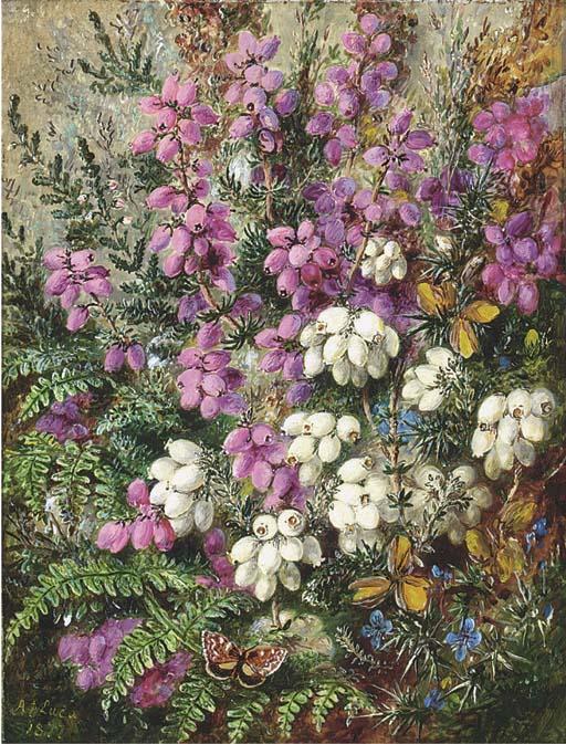 Albert Durer Lucas (1828-1918)