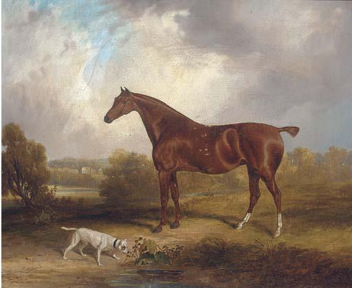 Samuel John Egbert Jones (fl.1