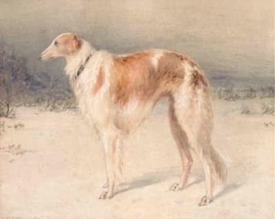M.A.V. Martinovich, early 20th