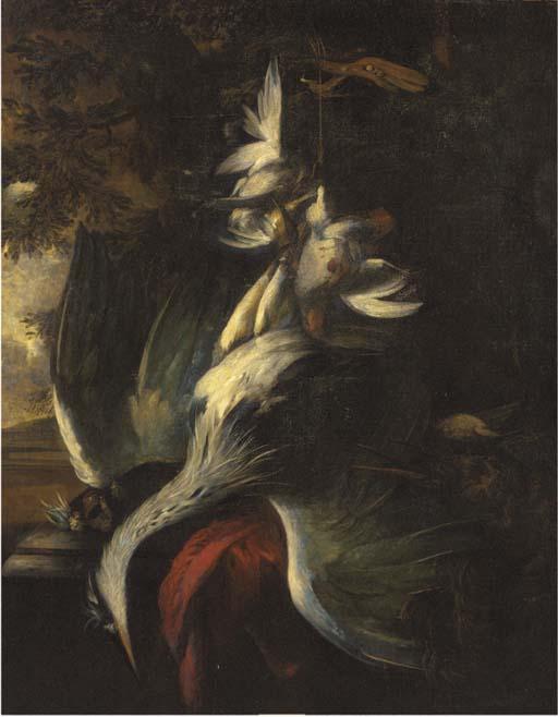 William Gouw Ferguson (1632/33