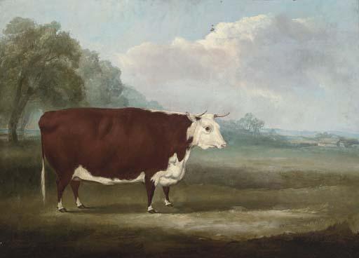 William Henry Davis (fl.1803-1