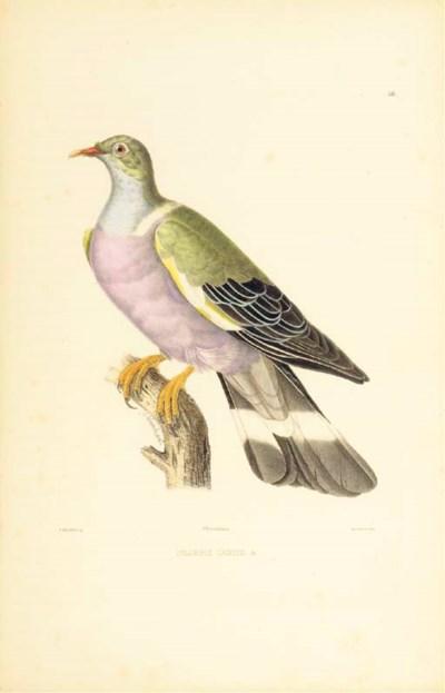 BONAPARTE, Charles-Lucien (180