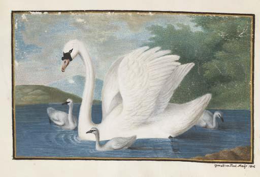 Paul Maÿr (Actif au début du 19ème siècle)