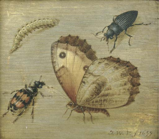Scuola olandese, secolo XVII,