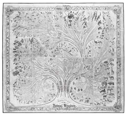 REDFIELD, Anna Maria (1800-188