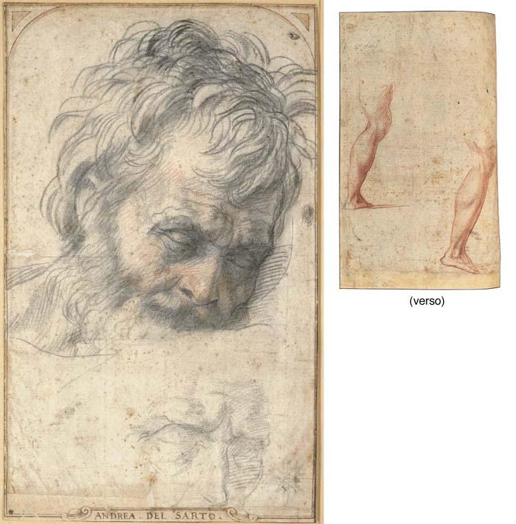 Andrea d'Angiolo, called Andrea del Sarto (Florence 1486-1530)