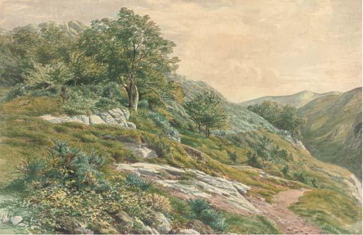 Henry Birtles (1838-1907)