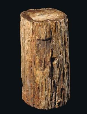 A good fossilised wood log,