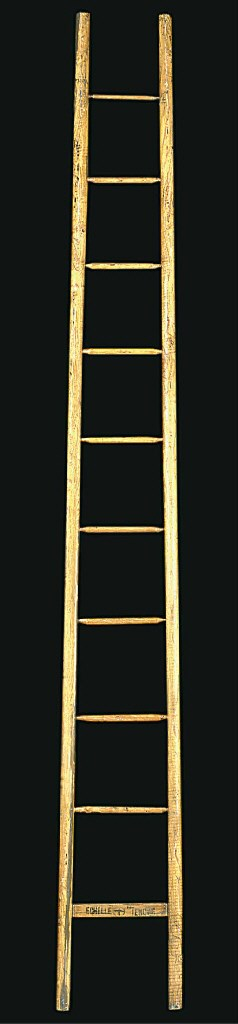 A French ash ladder