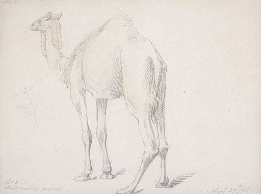 WILLIAM THOMAS STRUTT (1825-19